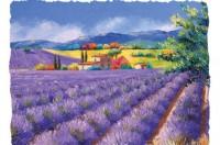"""Дегустационный сет французских вин в ресторане """"Креп де Шин"""""""